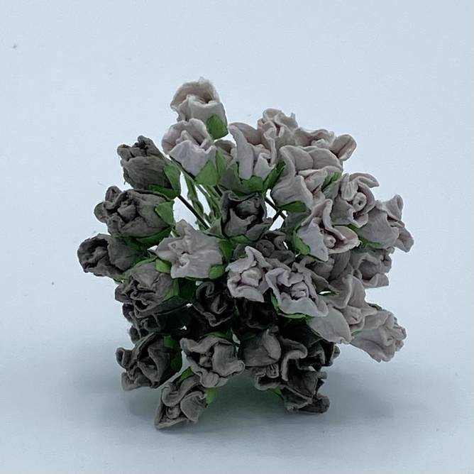 Bilde av Lukket rose, grå