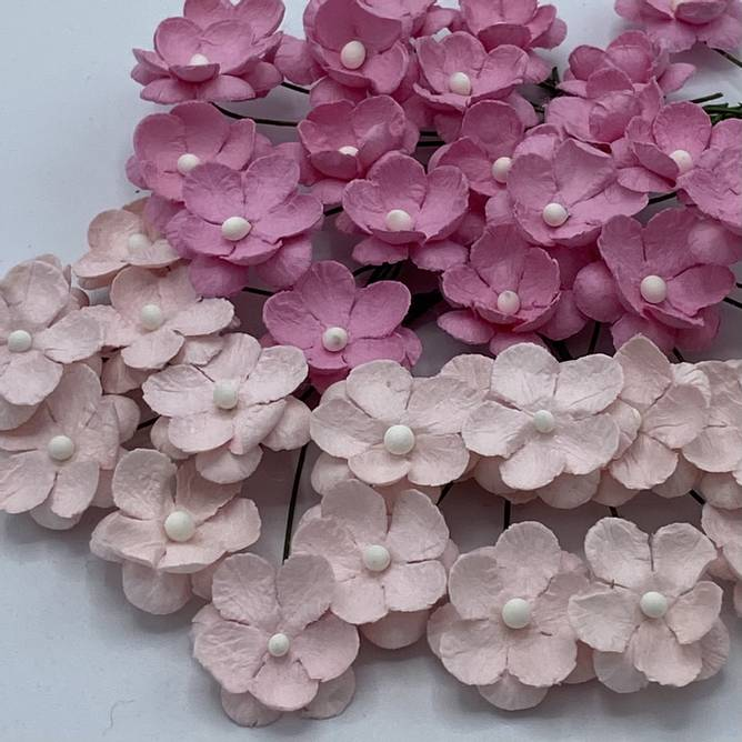 Bilde av Søte blomster, lys rosa (6)