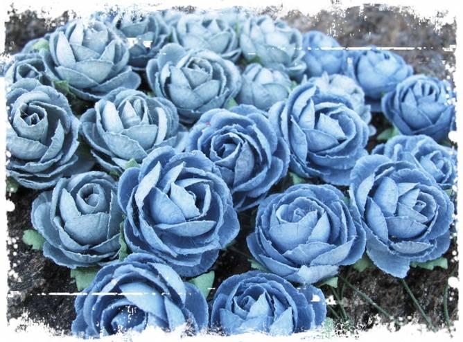 Bilde av Pion, vintage blå (6)